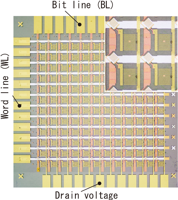 A chip photograph of organic transistor integrated circuits for the world's lightest and thinnest flexible sensor system